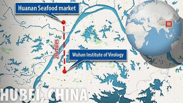 The Wuhan National Biosafety Laboratory is located just about 20 miles away from the Huanan Seafood Market, the epicenter of Coronavirus outbreak