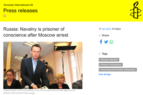 Amnesty International Rescinds Navalny's 'Prisoner Of Conscience' Status After Discovering His Past