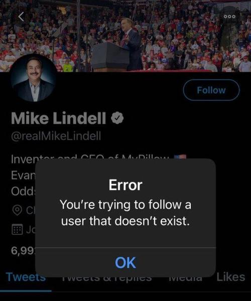 MyPillow CEO Mike Lindell Has Been Permanently Banned From Twitter