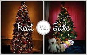 Christmas Trees: The Battle Between Pine & Plastic